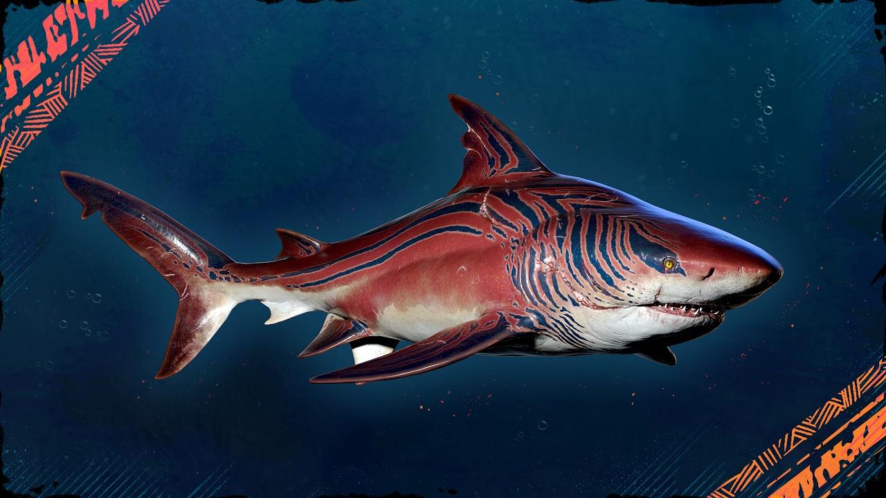 Maneater Tiger Shark